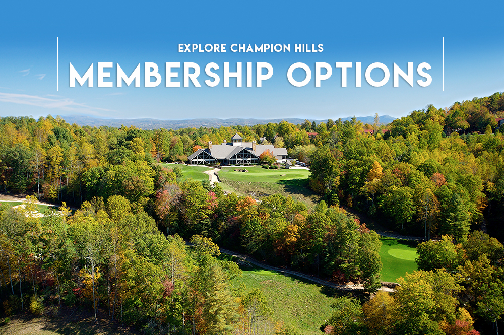 membership-options-blog-copy
